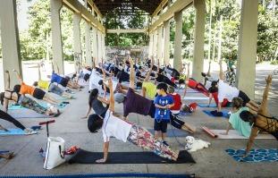 Yoga colectivo en el parque de Ibirapuera
